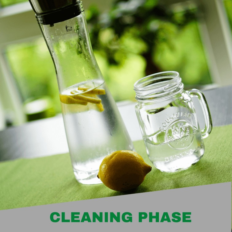 Cleaning phase for ayurvedic treatment for diabetes